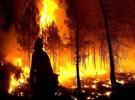 Las comunidades más afectadas por el fuego en 2008