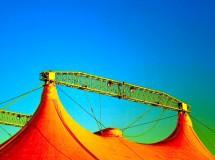 Bolivia prohíbe el uso de animales en los circos