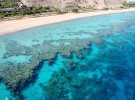 Informe insta a actuar para evitar la desaparición de los corales