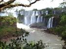 Peligran los peces que habitan en la zona de las Cataratas del Iguazú