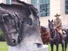 Australia honra a sus animales mártires de guerra