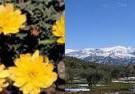 Parque Natural de Sierra Nevada