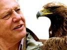 Sir David Attenborough obtuvo el premio Príncipe de Asturias de Ciencias Sociales 2009