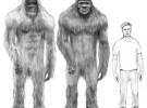 El King Kong que existió en la realidad (parte 2)