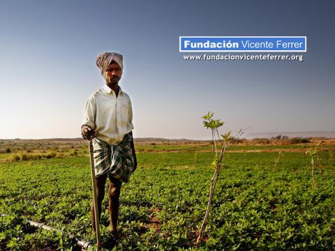 AgricultordeAnantapurFundacionVicenteFerrer