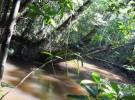 El Amazonas no es plano como se creía