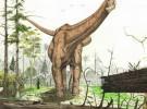 <em>Antarctosaurus</em>