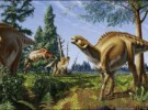 Hallazgo de sangre en dinosaurio de 80 millones de años