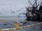 La guerra contra los peces