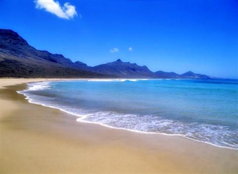 Peligro para las especies nativas en Fuerteventura
