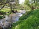 El río Guadalix en peligro