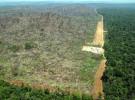 La importancia de las áreas protegidas para el desarrollo sostenible