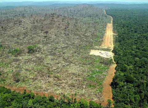 amazoniadeforestada