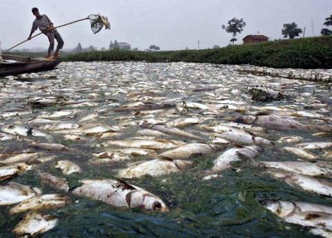 Cómo limpiar el río más sucio del mundo