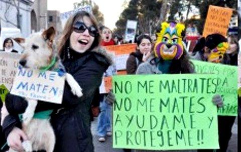 Manifestación en Neuquén contra la matanza de perros