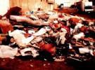 El mundo y la basura