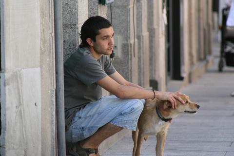 El Perro el Amigo siempre presente!
