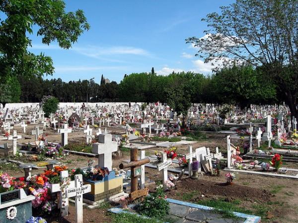 La muerte sostenible y los ataúdes biodegradables están de moda