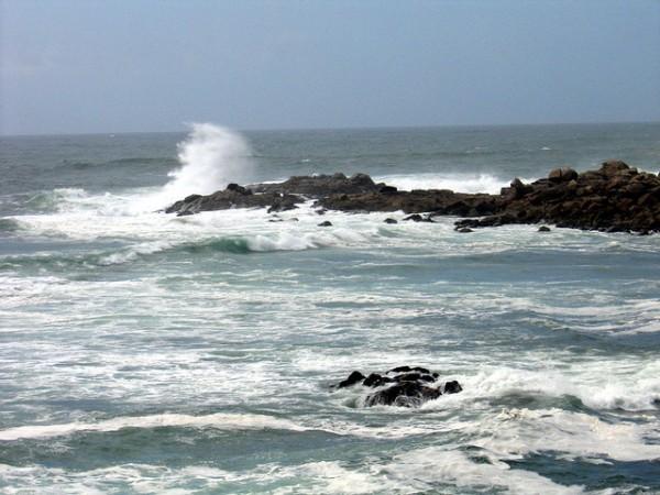 acidificacion oceanica