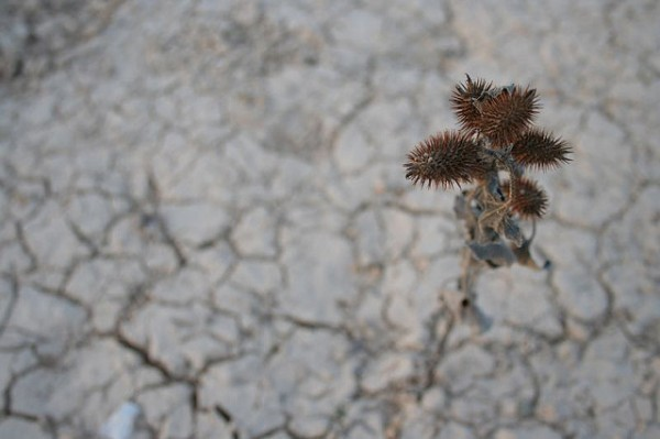 Pasar un invierno seco en España