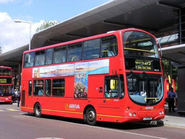 nuevo autobus