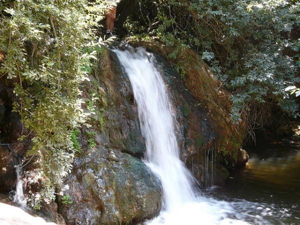 El Parque Natural de la Sierra Norte de Sevilla está al norte de Andalucía