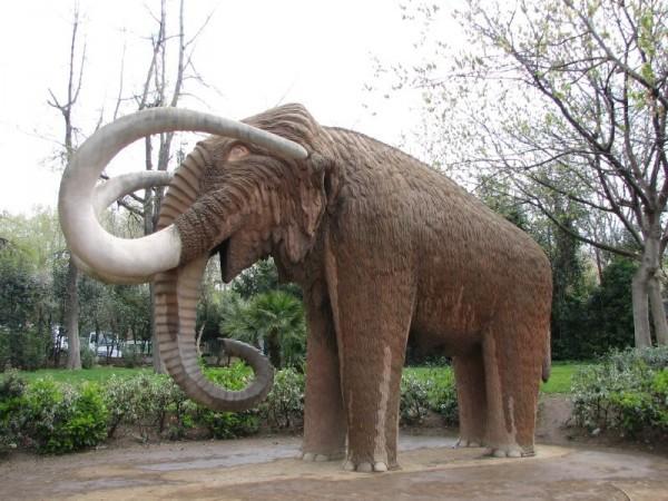 El hombre y acciones naturales fueron culpables de la desaparición de los mamuts