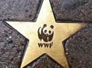WWF prescinde del presidente de honor