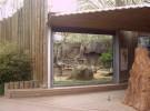 Nuevo delfinario para el zoo de Barcelona