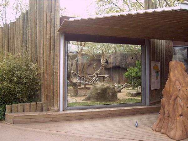 imagen zoo barcelona