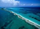 La Gran Barrera de Coral de Australia pierde la mitad de sus corales