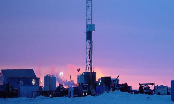 Explotación pretoleo Artico