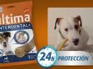 Affinity Ultima Interdental +, la higiene bucal perfecta para tu perro