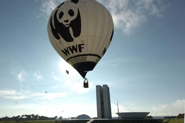 WWF, una de las organizaciones de conservación de la naturaleza más importantes del mundo