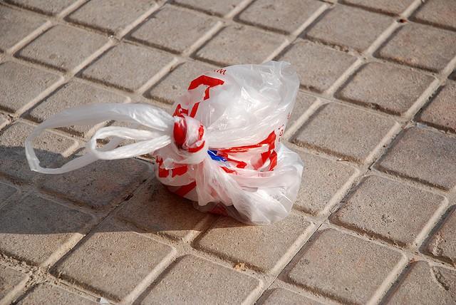 Francia anuncia su intención de prohibir las bolsas de plástico contaminantes