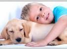 5 razas de perros ideales para convivir con niños