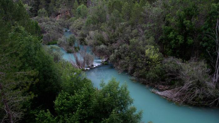 Reflexiones tras el día Mundial de la Vida Silvestre