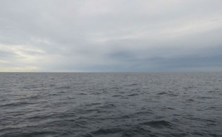 Los vertidos del pesquero Oleg Naydenov ponen en juego el equilibrio del ecosistema marítimo canario