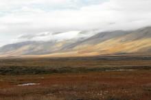 La tundra, el bioma más frío del planeta