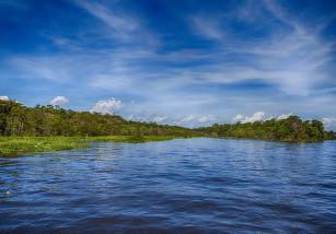 Lo que debes de saber sobre la Amazonia I