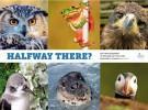 Birdlife denuncia el incumplimiento de la UE de sus objetivos de biodiversidad para 2020