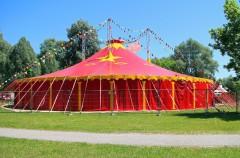 Se confirma la prohibición de utilizar animales en circos de Cataluña