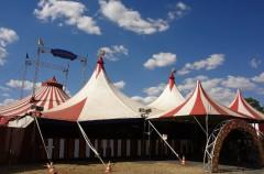 México: Se acaba el espectáculo con animales en circos