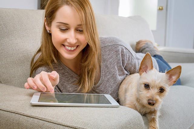 5 aplicaciones para mascotas, ¡descúbrelas!