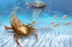 <em>Pentecopterus decorahensis</em>, un escorpión casi tan grande como una persona