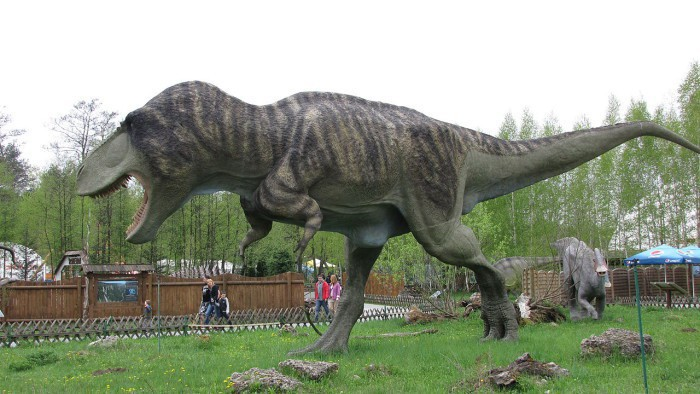 Algunas curiosidades sobre los dinosaurios