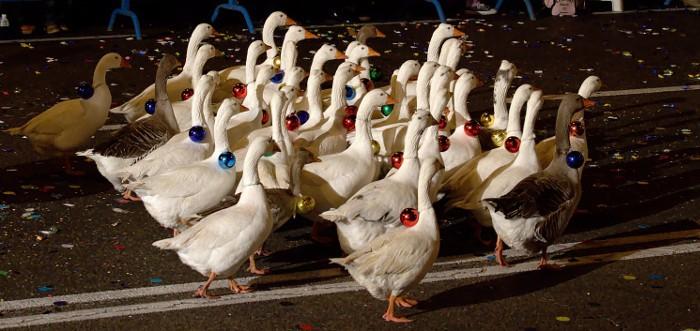 Otro paso importante: la Cabalgata de Reyes de Valladolid evitará el uso de animales
