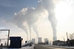 El Calentamiento Global provoca que se extingan los primeros mamíferos