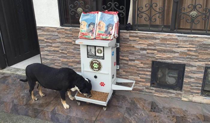 Así son las nuevas máquinas expendedoras de comida para mascotas