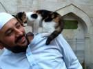 Esta mezquita ofrece hogar a los gatos abandonados